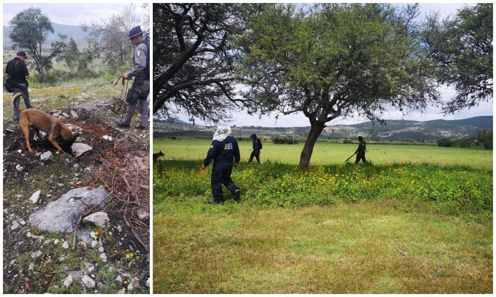 Coordina y ejecuta Fiscalía de Oaxaca operativo de búsqueda de personas desaparecidas en Mixteca, localizan un cuerpo