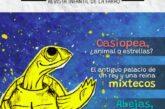 Descubre don Quesillote, detective privado, el mágico mundo de Casiopea