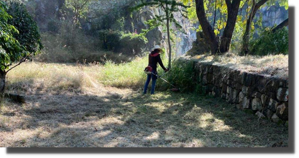 Brinda Administración mantenimiento constante al Parque Canteras