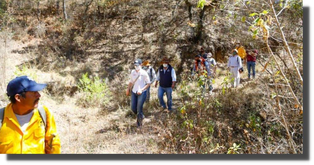 Recorre Semaedeso Santa Ana del Valle, comunidad beneficiada por Pago de Servicios Ambientales