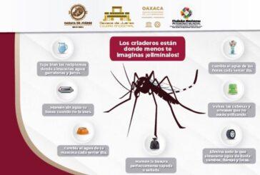 Exhorta Ayuntamiento de Oaxaca a sumar esfuerzos para evitar riesgos a la salud por dengue