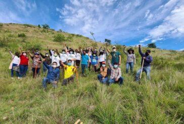 Extiende Ayuntamiento de Oaxaca labores de reforestación a San Juan Chapultepec