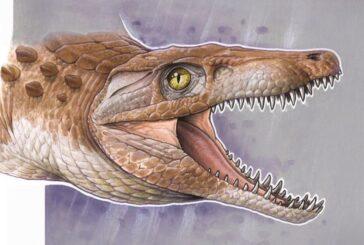 Descubren 'abuelo' de cocodrilos modernos; tiene 148 millones de años