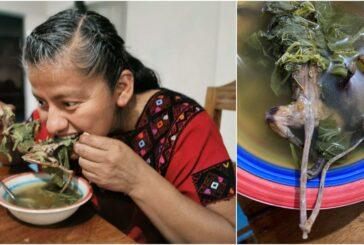 Diputada de Oaxaca se hace viral por comer rata de monte, platillo ancestral chiapaneco