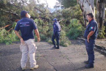 Atiende Protección Civil de Oaxaca de Juárez afectaciones por lluvias en la capital
