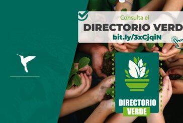 Se fortalece el Directorio Verde del Ayuntamiento de Oaxaca con 141 participantes
