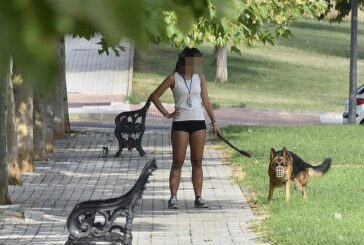 Truco amigable para evitar que los perros defequen en tu jardín