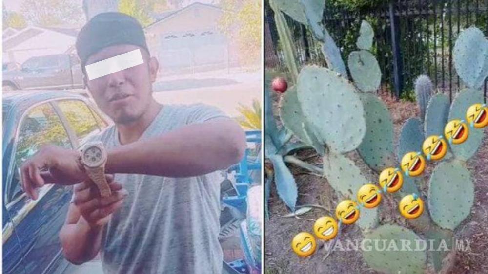 'Parecen marranos'… TikToker guatemalteco insulta a mexicanos por comer nopales